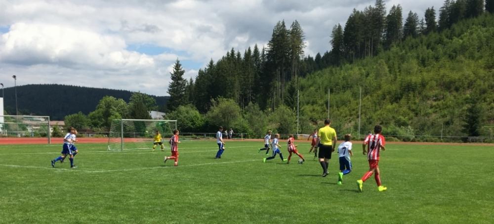 SBFV-Meisterschaft der D-Junioren 2017/2018 in Radolfzell